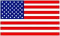 USA Flag Logo